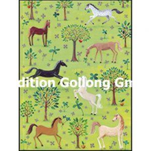 Mini kort med kuvert 5-300